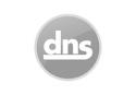 dns-logo-gray